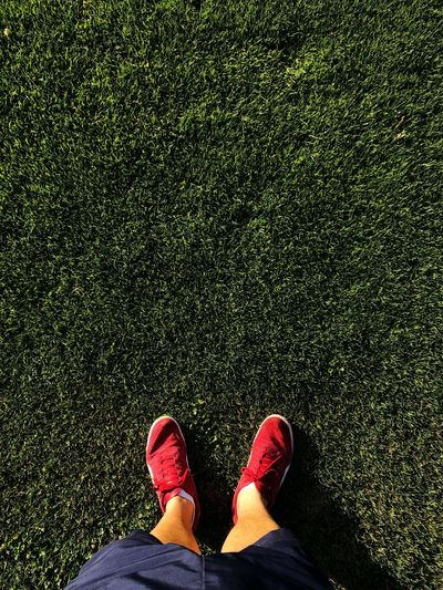 Low Section Of Man Wearing Shoes While Standing On Grass