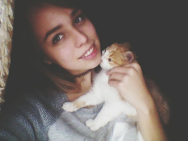 Cat♡ милота Котик Cat Lovers