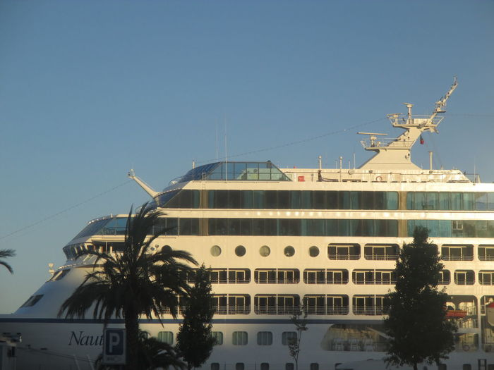 #Cruise Ship Arriving To Lisbon #Lisbon Port #Luxury Cruise #luxury Travel #summer #summer Vacations #SUNNY DAY=happy Day #Yacht Architecture Blue Building Exterior Built Structure City Clear Sky Cruise Ship Day DreamTrip Nature No People Outdoors Palm Tree Sky Transportation Travel Tree