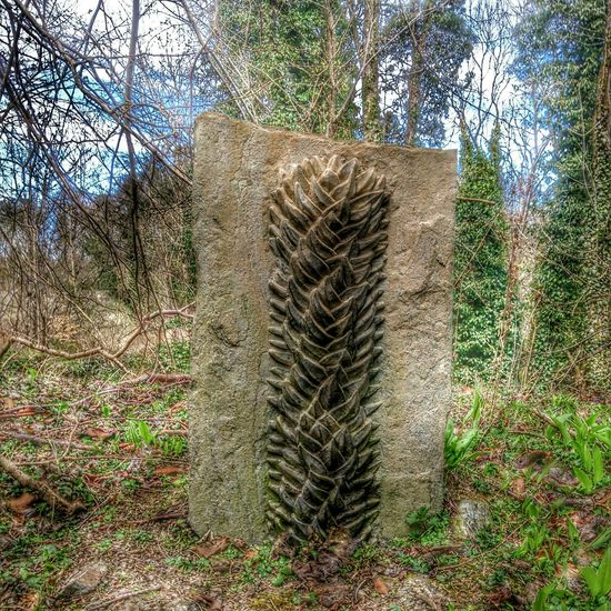Stone in Blairgowrie Blairgowrie Stone Walking 2015