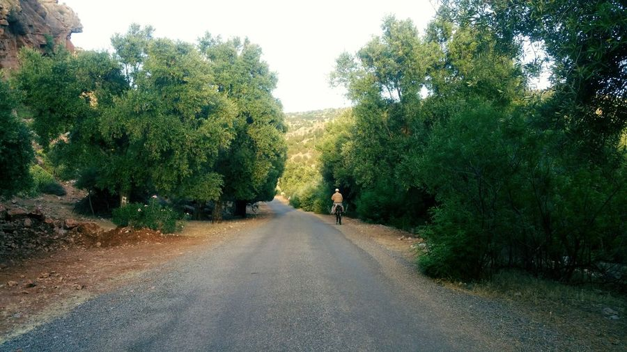 road of summer trip Village Roads Moroco Nature Maroc Summer Summer Road Tripping Tree Road Sky Landscape