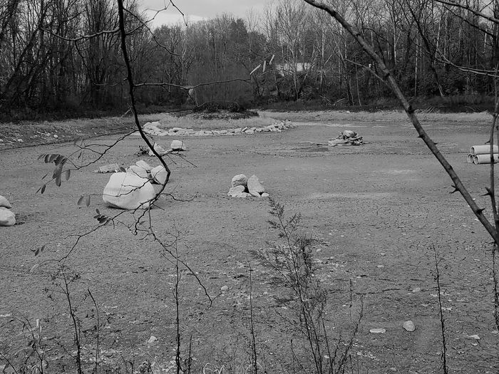 What's underneath Catasauqua Lake. Emptied Lake Under The Water Trees Rocks Rocks In A Lake Nature Outdoors Peaceful Bare Trees No People Black And White Landscape Silence Alone In Nature Sky Lake Nature Day