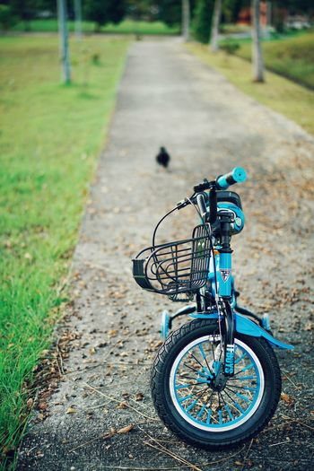 blue bicycle with entity Kidsphotography Kids Being Kids Kids EyeEmNewHere Playing EyeEm Kids Bicycle Road Stationary Bicycle Rack Grass Bicycle Basket Bicycle Lane Spoke Cycling Pedal Handlebar Parking Wheel Exercise Bike The Still Life Photographer - 2018 EyeEm Awards