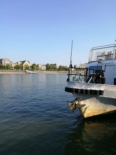 Sailing Danubio