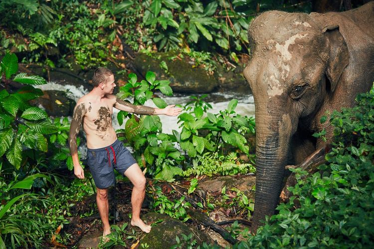 Shirtless young man standing by elephant in forest