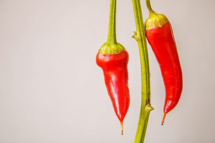 Red Hot Chili Peppers EyeEm Best Shots EyeEmNewHere Green Green Color Close-up Day Food Food And Drink Freshness Hanging Healthy Eating Multi Colored No People Red Redhot Redhotchilipeppers Spice Studio Shot Vegetable White Background