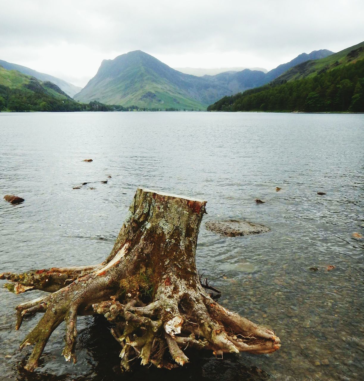 mountain, nature, water, lake, scenics, no people, tranquility, non-urban scene, tranquil scene, day, beauty in nature, outdoors, mountain range, sky, tree, dead tree, landscape, close-up