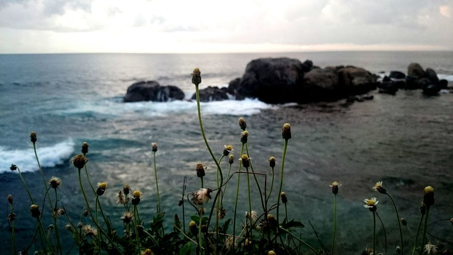 Galle Fort Evening Sea Sky Flowers Relaxing with Love ♥