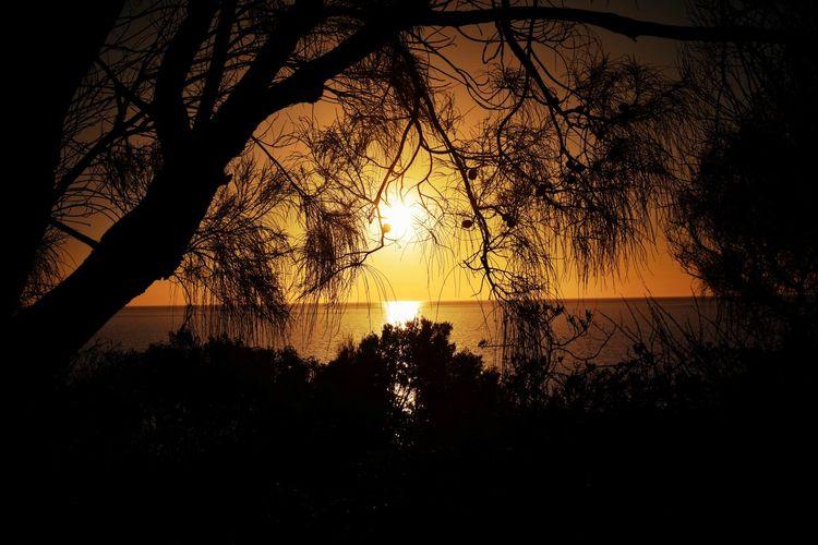 Sunset, Marino