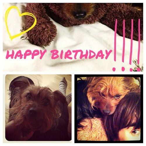 Happy birthday Precious! 8YearsYoung