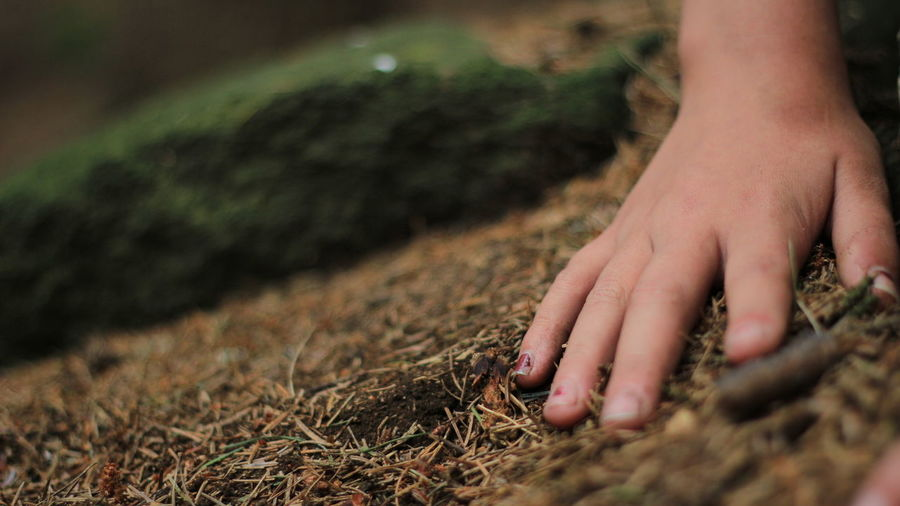 Day Field Human Foot Human Limb Human Skin Low Section Nature Outdoors Person Selective Focus
