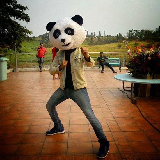 Kungfu Panda ?? Ganteng-Ganteng Panda ?? Behindthescene Bored Iseng Crazytime shooting tvc igersindonesia panda lol funny joke snapseed