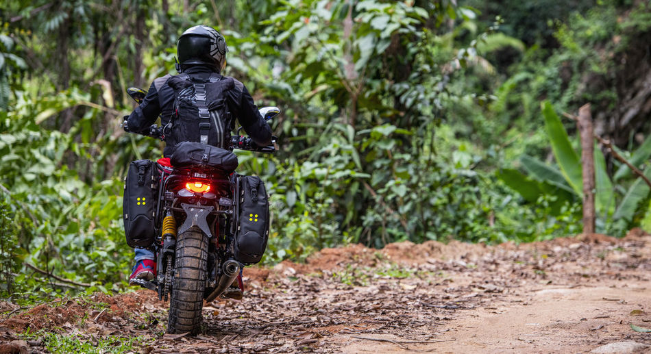 Rear view of motorcycle on dirt road in forest