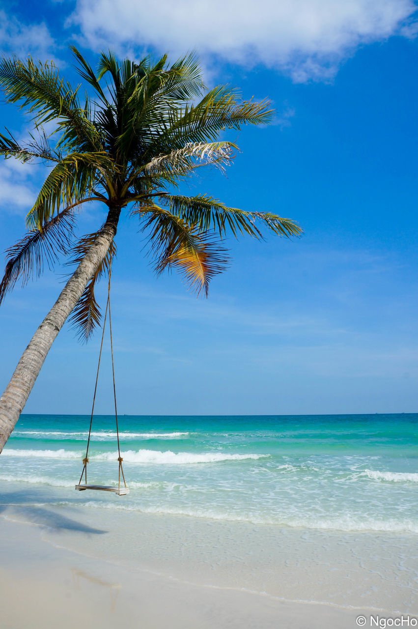 sea, beach, beauty in nature, scenics, palm tree, tranquility, tranquil scene, nature, tree, water, horizon over water, sky, blue, no people, sand, day, outdoors