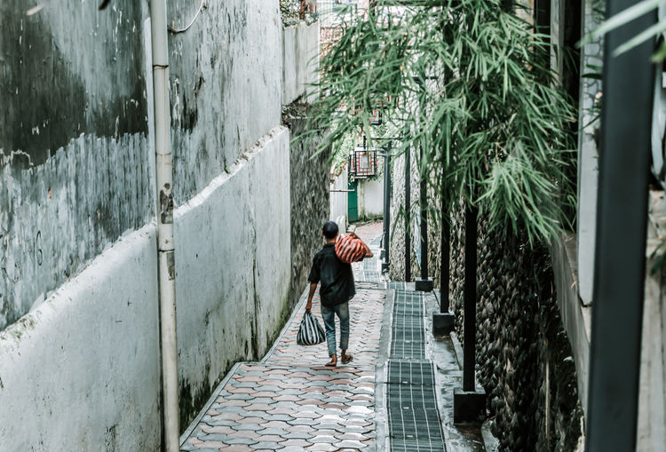 Rear view of woman walking on footpath amidst plants