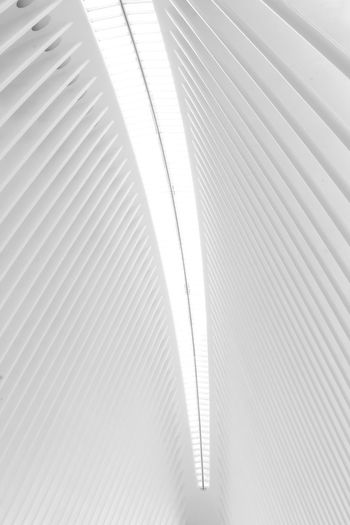 Hallway lookup New York New York City Pattern Backgrounds No People Indoors  Architecture Built Structure White Color Day Close-up Textured  Low Angle View Ceiling Architectural Column Architecture Architecture_collection Architectural Feature White White Background Ceiling Symmetry Symmetrical City City Life Pattern, Texture, Shape And Form Design