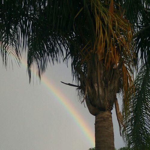 Rainbow Arcoiris Nature Un hermoso regalo de la Naturaleza esta tarde