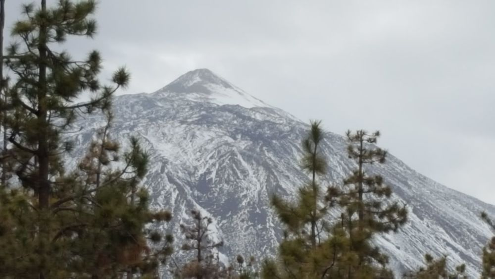 Teide Teneriffa Mountain Snow Nature Pine Tree Landscape Outdoors No People