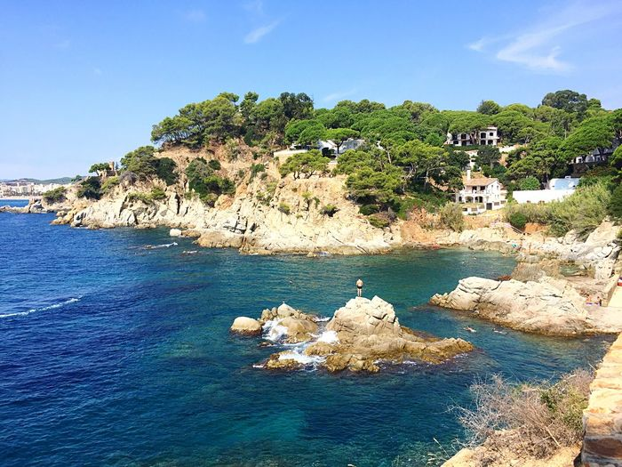 Swimmers Man On The Rock Bay Wild Beach Turquoise Blue Water Mediterranean Sea Mediterranean  Rocky Beach Clear Blue Water Pine Trees Summer Summertime Costa Brava Summer Holidays Water Sky Beauty In Nature Nature Sea Scenics - Nature Blue Day Plant Tranquil Scene Tree Land Rock Rock - Object Outdoors Idyllic