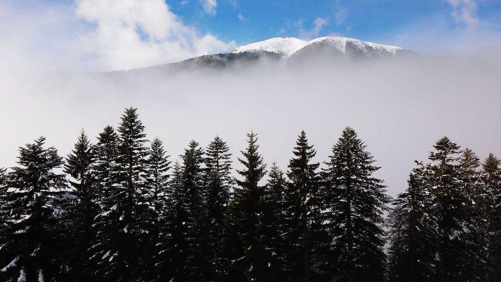 Lagorai february 2015 Enjoying Life Skitouring Freeriding Nature Winter Italy Italia