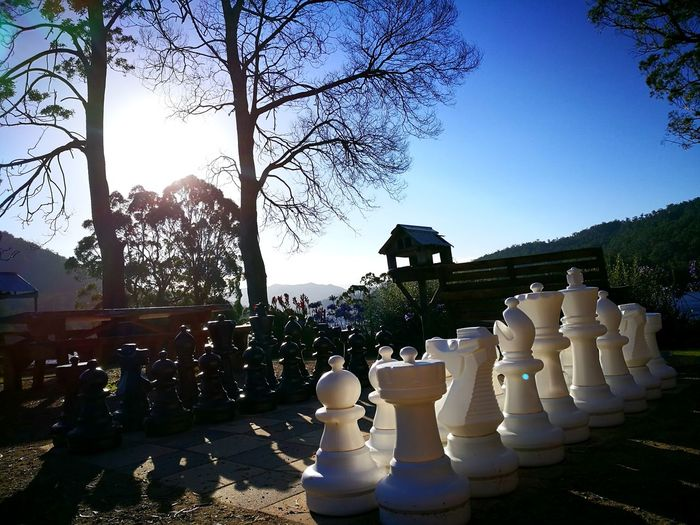Let's play... Chess Chess Piece Tree Lake View Outdoors Sky Chess Board Lakeside Chess Board Blackandwhite Lakefront Blue Sky Shadow Play Shadows And Light Peaceful Moments Peace And Tranquility Time Stands Still