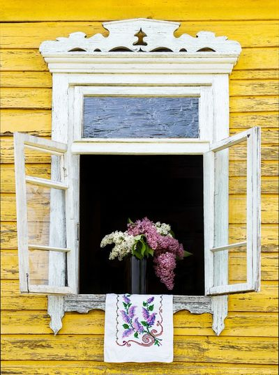 Close-up of potted plant on wooden window of building