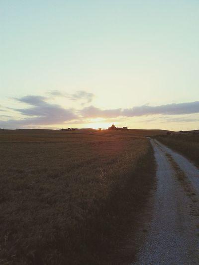 Una giornata in campagna trale dorate spighe Relaxing