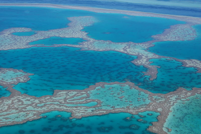Aerial view of the reef Great Barrier Reef. Queensland. Australia Water Blue No People Nature Day Full Frame Aerial View High Angle View Pattern Sea Land Beach Backgrounds Outdoors Turquoise Colored Pool Beauty In Nature Reflection Coral Reef Great Barrier Reef Queensland Australia