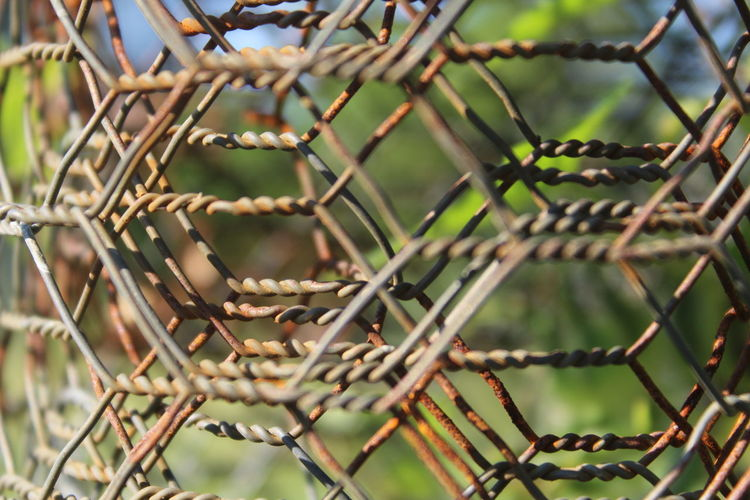 extreme close-up wire Barbed Wire Branch Chainlink Fence Close-up Close-up Shot Close-up Wire Day Extreme Close-up Fence Focus On Foreground Fragility Full Frame Green Green Color Growth Nature No People Non-urban Scene Outdoors Protection Safety Security Sharp Spiked Thorn