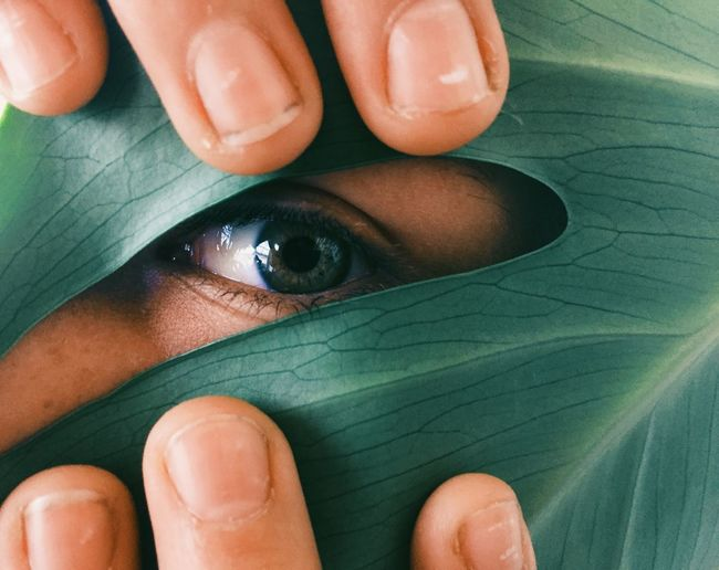 Close-up portrait of person looking through leaf