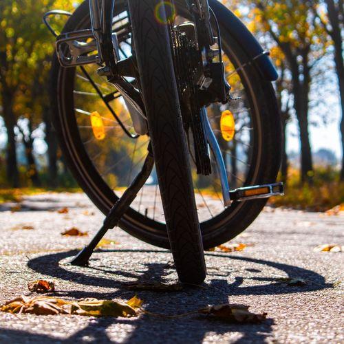 Radtour Ostfriesland Fahrradtour Fahrradfahrens Fahrradfahren Fahrrad Fahrräder Radtour Radfahren Radfahrweg Herbst Herbststimmung Herbstfarben Wege Und Strassen Radweg Tree Tire Autumn Bicycle Close-up Pedal Vehicle Part