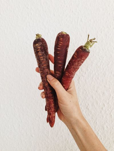 Fresh Produce Carrot Carrots Close-up Food Freshness Holding Human Finger Human Hand Purple Carrot Three Vegetables Vitamin A White Background