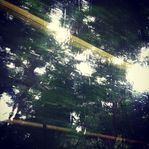 又落雨啦 Rain Day