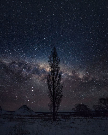Astronomy Beauty In Nature Cold Temperature Field Galaxy Land Landscape Milky Way Nature Night No People Plant Scenics - Nature Sky Snow Snowcapped Mountain Snowing Space Star Star - Space Tranquil Scene Tranquility Tree