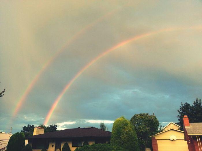 Rainbows Dani