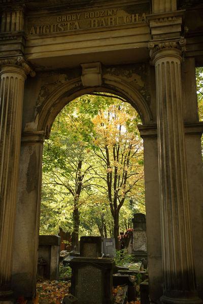 Autumn Cemetery Jewish Tomb Jewish Cemetery Lodz Tombstone Łódź