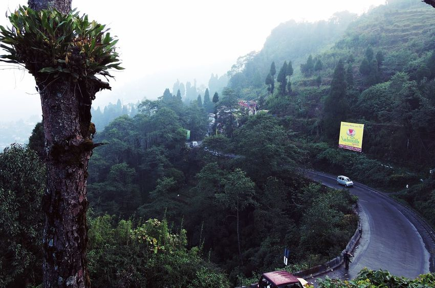 Beauty In Nature Clouds And Sky Darjeeling Darjeelingdiaries Green Green Color Hillyroad Landscape Lush Foliage Mountain Road Tranquility Traveldiaries Travel
