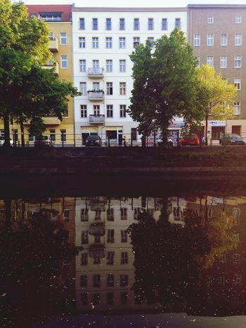 Reflection Symmetry Façade