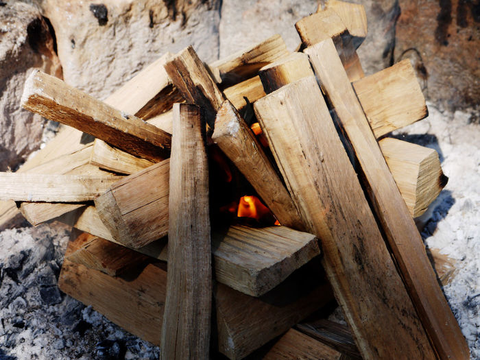 High angle view of wooden logs in forest