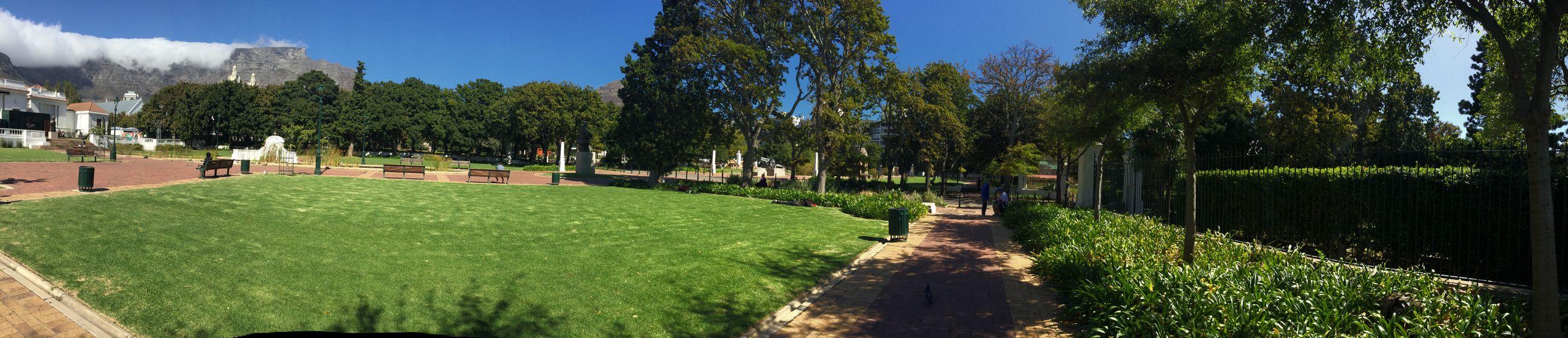 The Cape Town company gardens....Breathtaking..