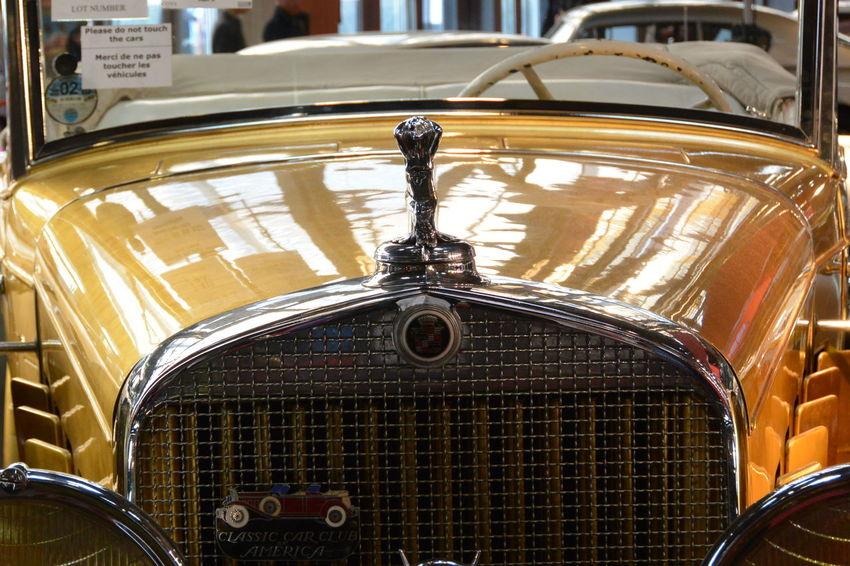 American Cars Cadillac Cadillac Fleetwood Dropped Coupé 1931 Car Car Grille Close-up Collector's Car Gold Colored Indoors  Las Vegas Paris International Motor Show 2016