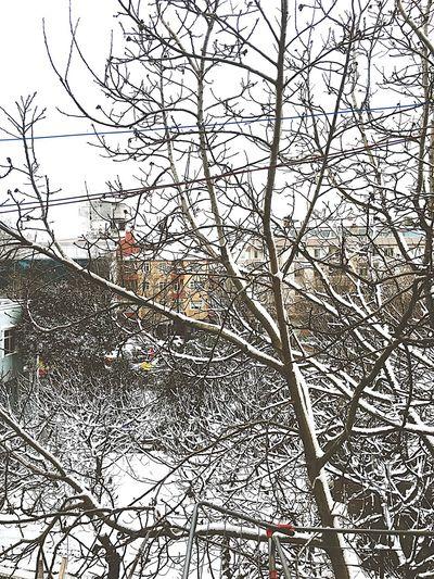 Snow ❄ Free Day My House My House Window