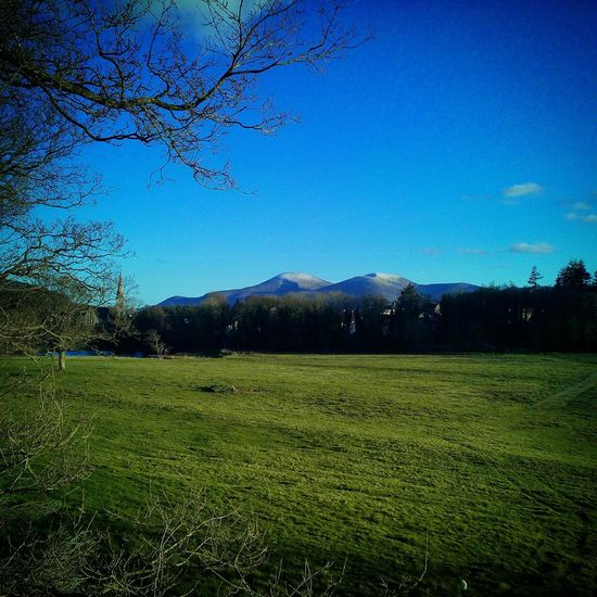 Mourne Mountains seen from Castlewellan forest park. Mourne Mountains Castlewellan Forest Park Landscape Ireland🍀