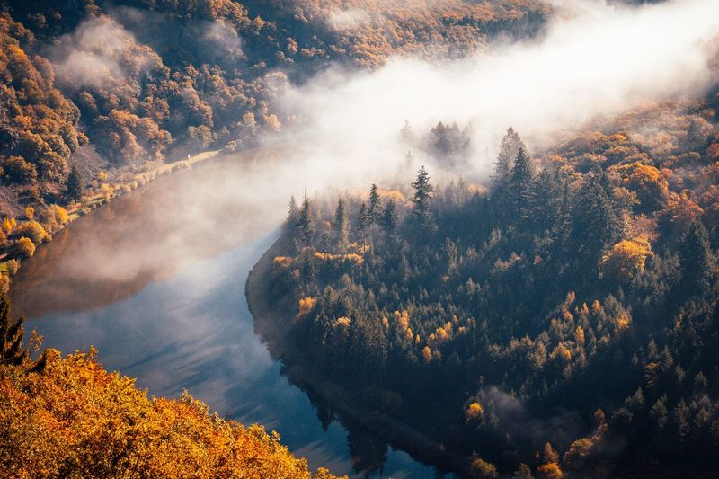 Scenic view of river amidst forest during autumn