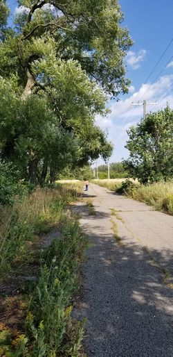 The rural Photography Girl Walking On Path. Tree Water Sky Green Color Countryside Blade Of Grass Country House Blooming Yellow Line Electricity Tower White Line Cloud Lakeside Hazy  Green Stream Country Road Greenery Calm Growing Grassland Grass Area Dragonfly Grass Plant Life