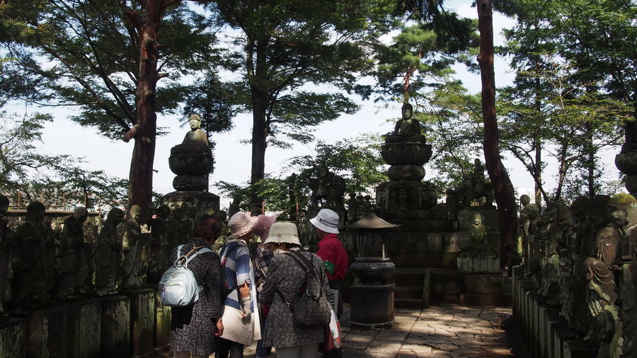 Budda Buddah Buddha Buddha Statue Buddhist Temple Day Hobbies Men Outdoors Person Stage - Performance Space Tree Tree Trunk 五百羅漢 仏像 喜多院 川越喜多院 川越市 Elderly Old Ladies Travel Destinations お年寄り 老人