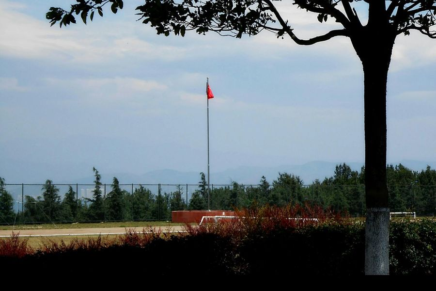 Open Edit Chinese Flag Trees Landscape_photography
