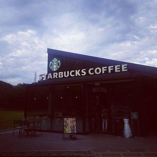 スタバ スターバックス Coffee Starbucks 宮島sa カフェ カフェ部 Cafe