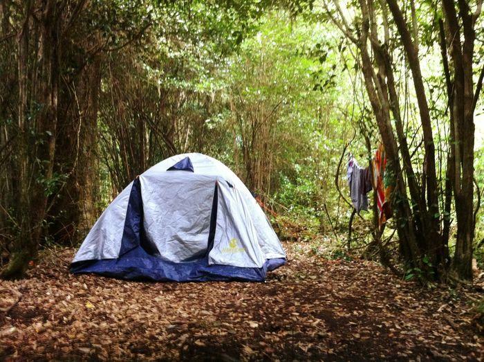 Adventure Club Mochileando Acampando