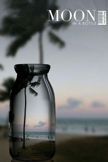 Moon in a bottle!/ Moon Shots Mooninabottle Beachphotography Palmtreeporn Moonrise